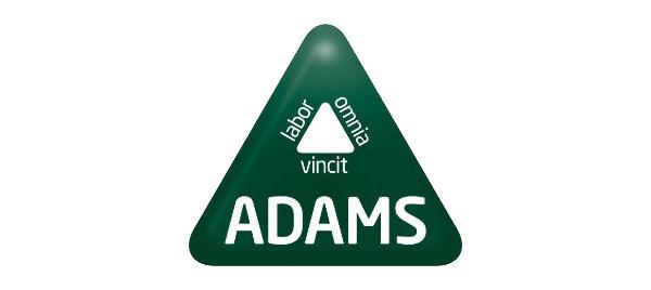 Software ADAMS Formación