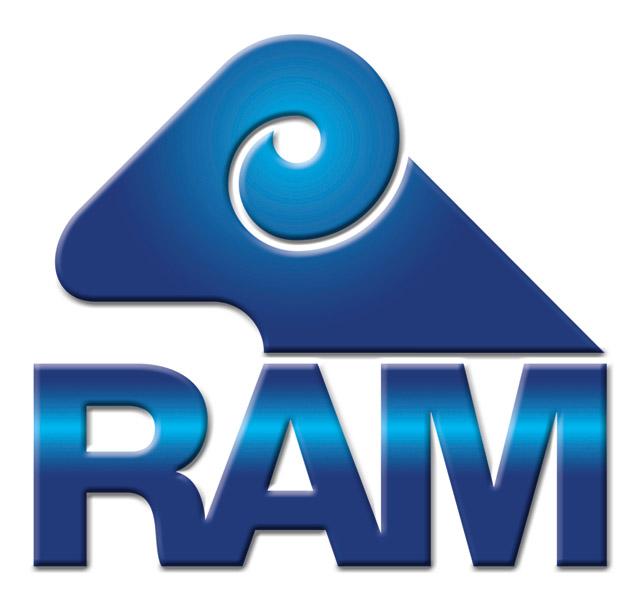 Software RAM